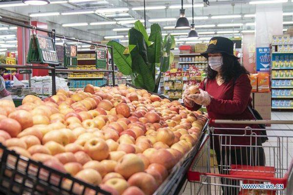 Ciudad China prohíbe comer animales salvajes tras crisis del coronavirus