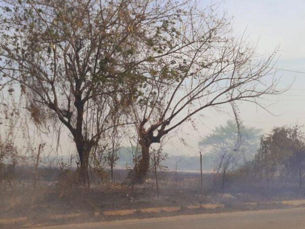 Protección Civil Municipal y Bomberos sofocan incendios en Tuxtepec