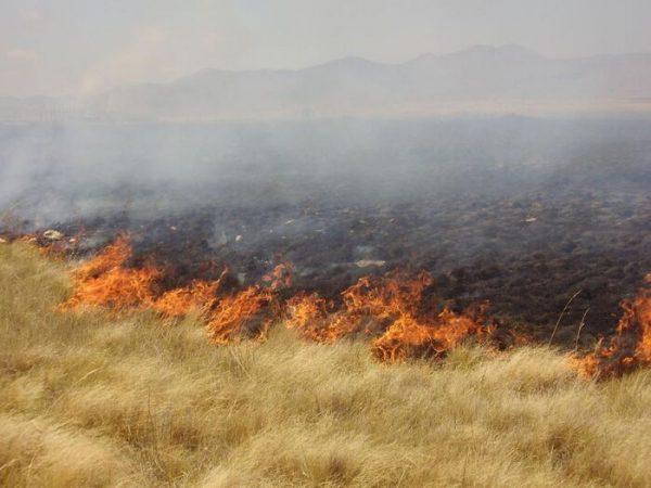 Descuido en quema para cultivos, principal factor de incendios: Protección Civil
