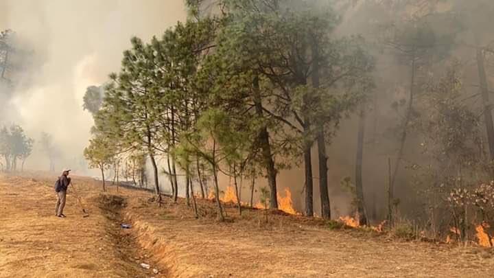 Incendios forestales en la Mixteca, dejan 9 personas calcinadas