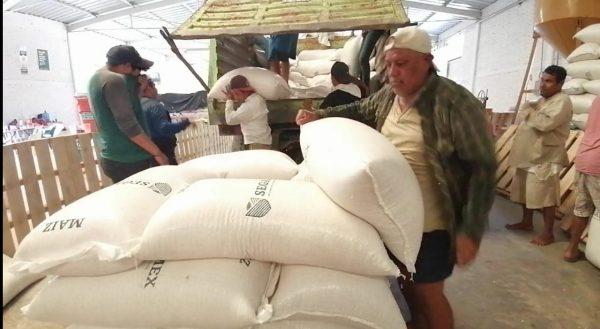 Se benefician productores de maíz en Valle, con centro de acopio SEGALMEX