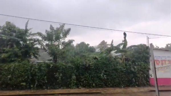 Tras lluvias, PC monitorea Valle Nacional