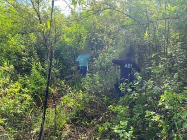 Podrían ser restos de 3 cuerpos encontrados en fosa de Tuxtepec, autoridades sin confirmar datos