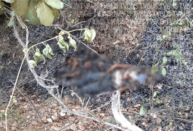Joven estudiante es asesinada y quemada junto a su bebé en Ejutla, Oaxaca