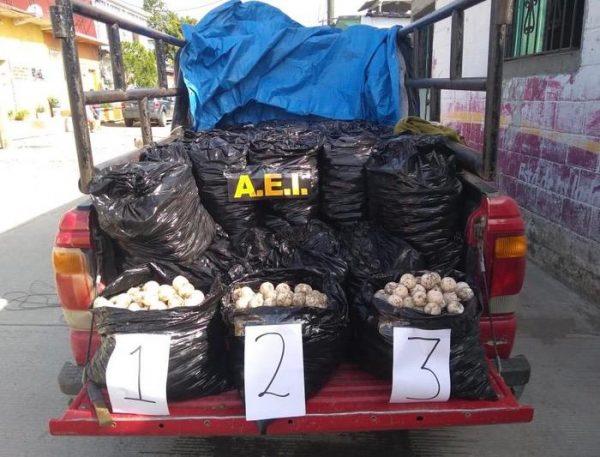 Asegura Fiscalía, 25 mil huevos de tortuga contenidos en una camioneta en el Istmo