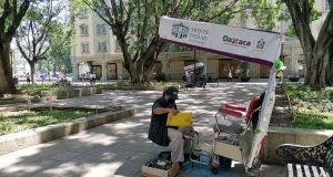 Boleros se rolarán para trabajar en zócalo de Oaxaca