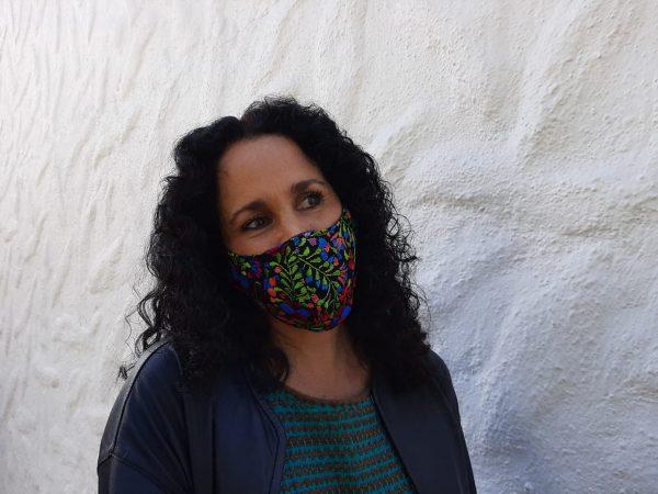 No todo Oaxaca está en naranja, hay zonas como Tuxtepec y el Istmo que están en rojo: Susana Harp