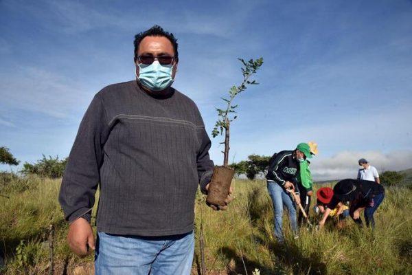 Se pierden en Oaxaca 30 mil hectáreas de bosque al año, comienza Diputado Horacio Sosa jornada de reforestación