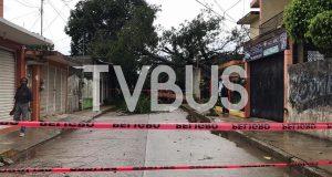 Hasta el momento, sin afectaciones colonias de Tuxtepec: PC