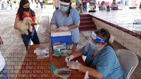 En Valle inicia jornada de vacunación antirrábica para mantener en 0 los casos registrados
