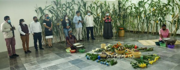 Solicita diputado Horacio Sosa a gobiernos estatal y municipal políticas públicas para la defensa del maíz nativo