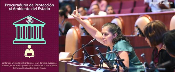 Exige Laura Estrada garantizar derechos ambientales con Procuraduría Estatal en la materia