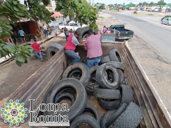 Inician campaña de descacharrización y nebulización en Loma Bonita