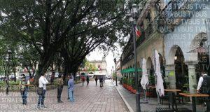 Cierran zócalo de Oaxaca por caída de árbol, restanranteros retiran su mobiliario de la banqueta
