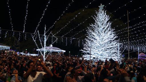 Sí habrá Blanca Navidad en Tuxtepec; feria decembrina se está analizado