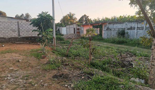 Desechadas un 75% de las solicitudes, para regularización de colonias en Tuxtepec