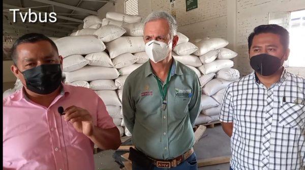 Productores de maíz de Valle y Jacatepec solicitarán prórroga al Gobierno Federal para poder sacar sus cosechas