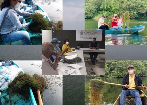 Conagua realizó diagnóstico del rio Santo Domingo por gestión de Laura Estrada