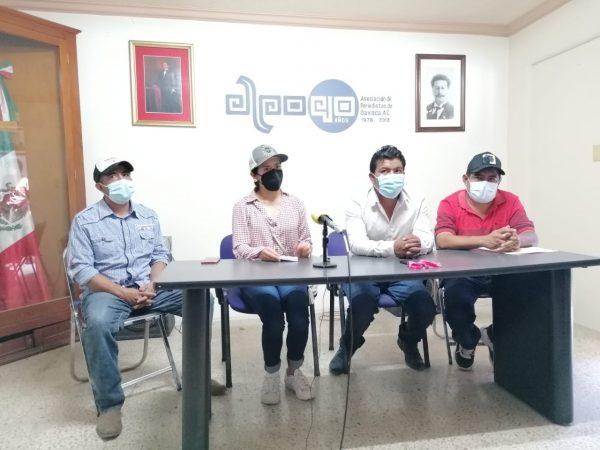 Integrantes del Consejo Regulador del Mezcal denuncian a Hipócrates Nolasco de irregularidades
