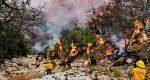 Controla Coesfo incendio en Magdalena Jaltepec