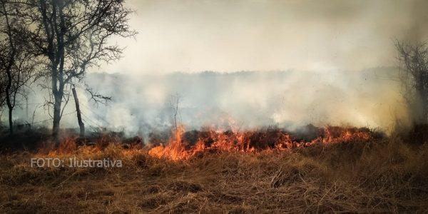 90% de incendios en pastizales de Tuxtepec, son provocados