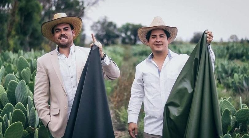Mexicanos transforman el nopal en cuero vegano