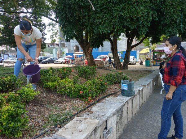 Por Día Mundial del Medio Ambiente, en Tuxtepec planean la reforestación de parques