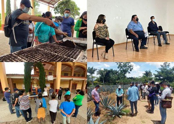 Inicia Sedapa capacitación virtual a productores de Oaxaca