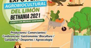 En noviembre, expo feria Agro biocultural de limón en Bethania